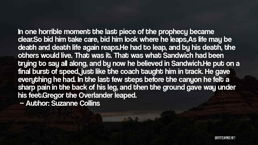 Steps Along The Way Quotes By Suzanne Collins