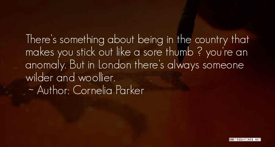 Stick In There Quotes By Cornelia Parker