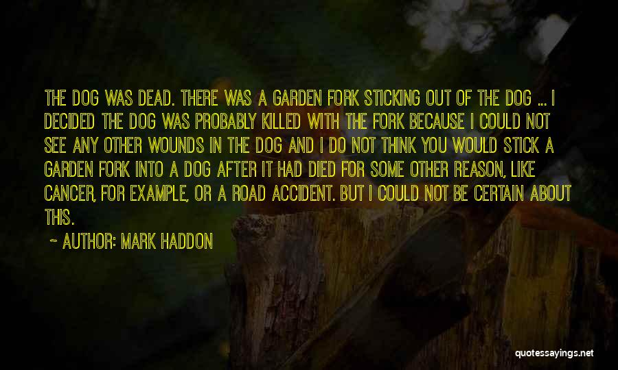 Stick In There Quotes By Mark Haddon