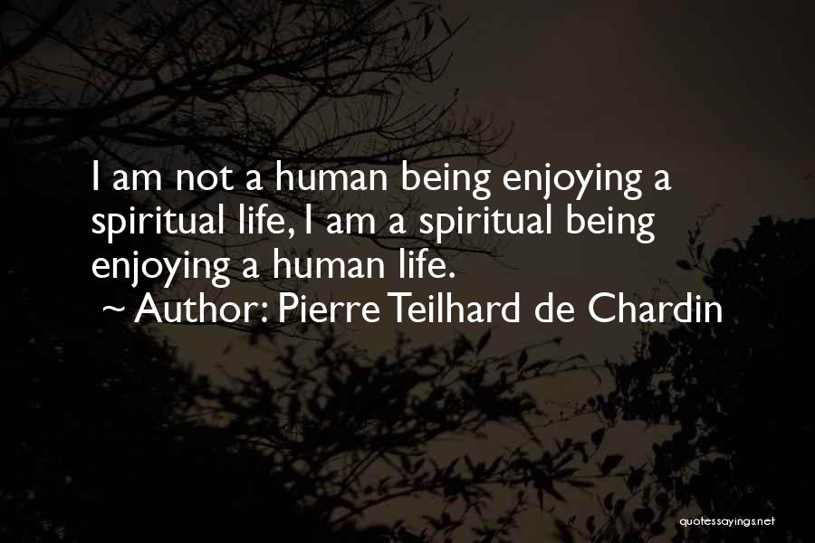 Still Enjoying Life Quotes By Pierre Teilhard De Chardin