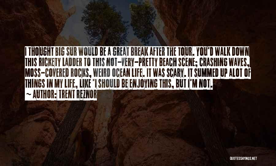 Still Enjoying Life Quotes By Trent Reznor