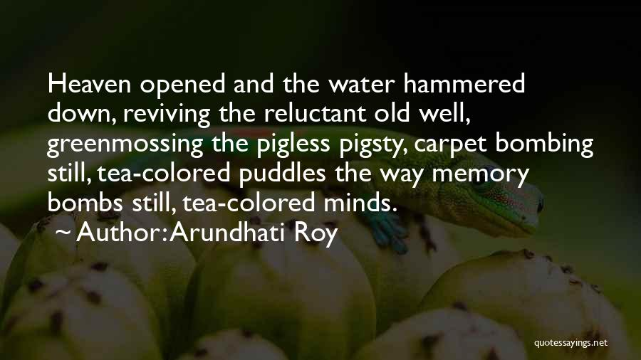 Still Water Quotes By Arundhati Roy