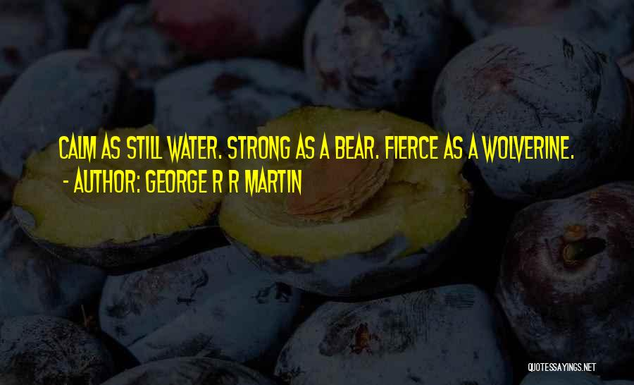 Still Water Quotes By George R R Martin