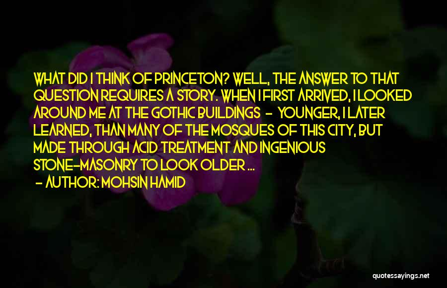 Stone Masonry Quotes By Mohsin Hamid