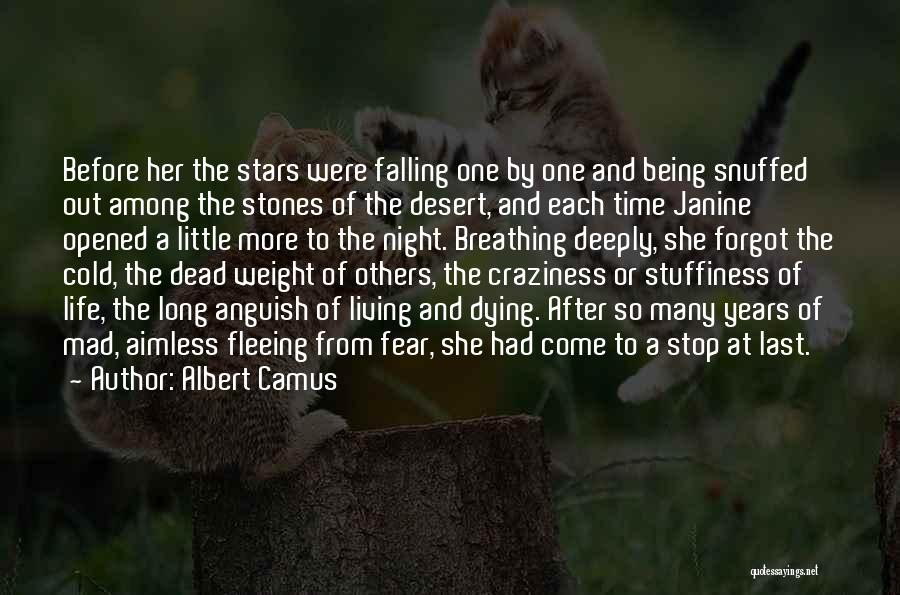 Stones And Life Quotes By Albert Camus