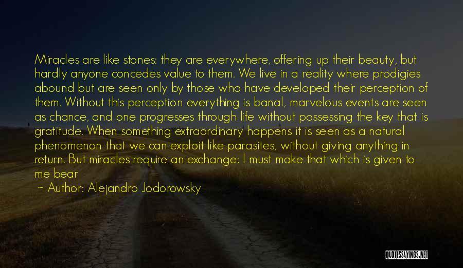 Stones And Life Quotes By Alejandro Jodorowsky