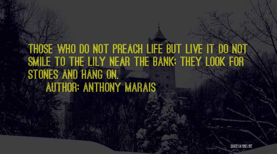 Stones And Life Quotes By Anthony Marais
