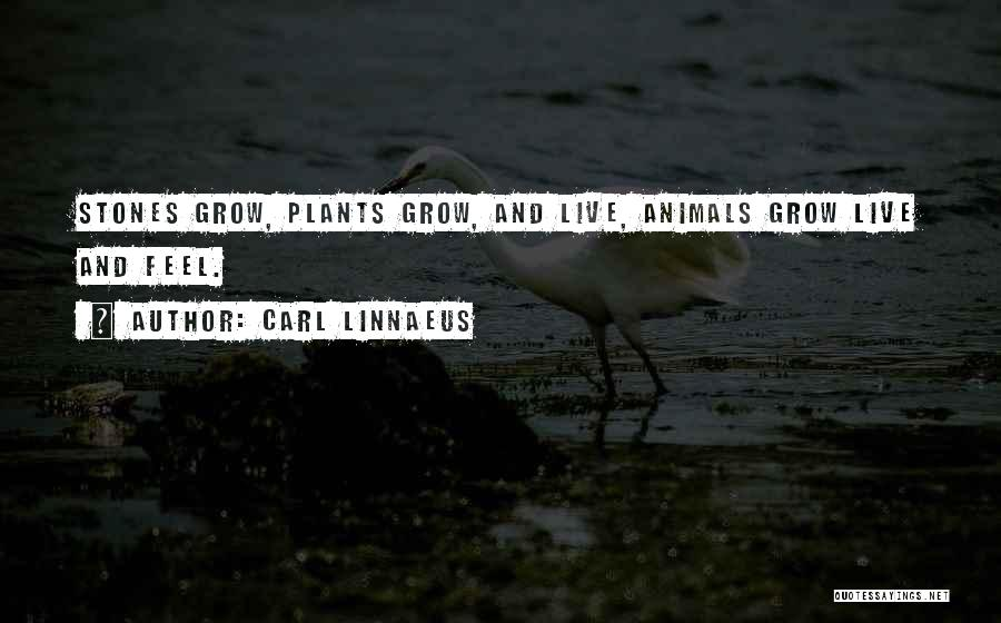Stones And Life Quotes By Carl Linnaeus