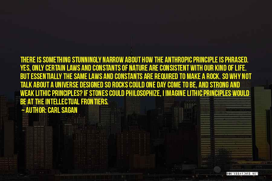 Stones And Life Quotes By Carl Sagan