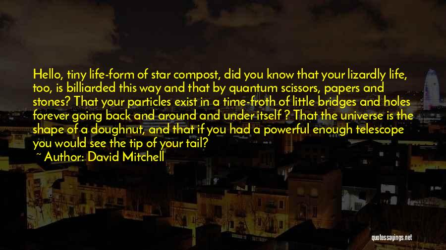 Stones And Life Quotes By David Mitchell