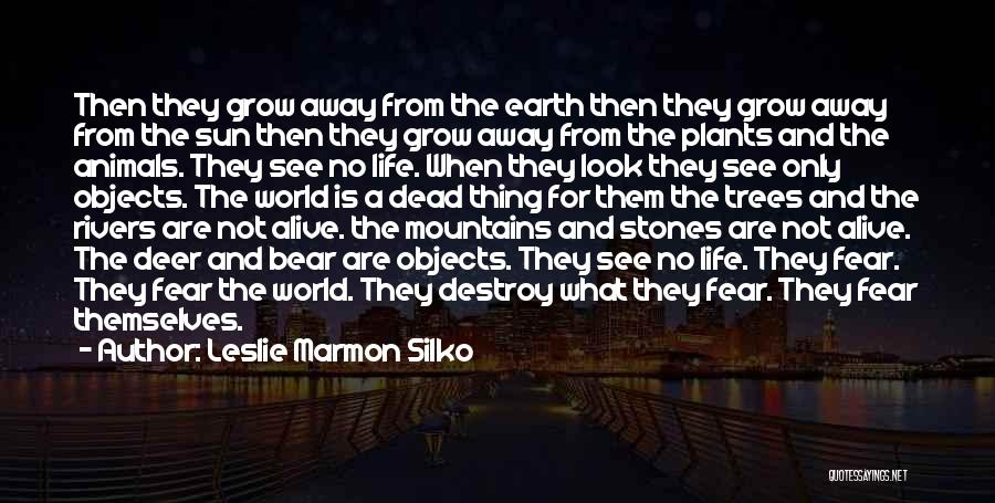 Stones And Life Quotes By Leslie Marmon Silko