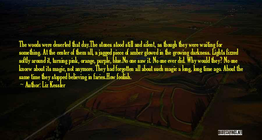 Stones And Life Quotes By Liz Kessler