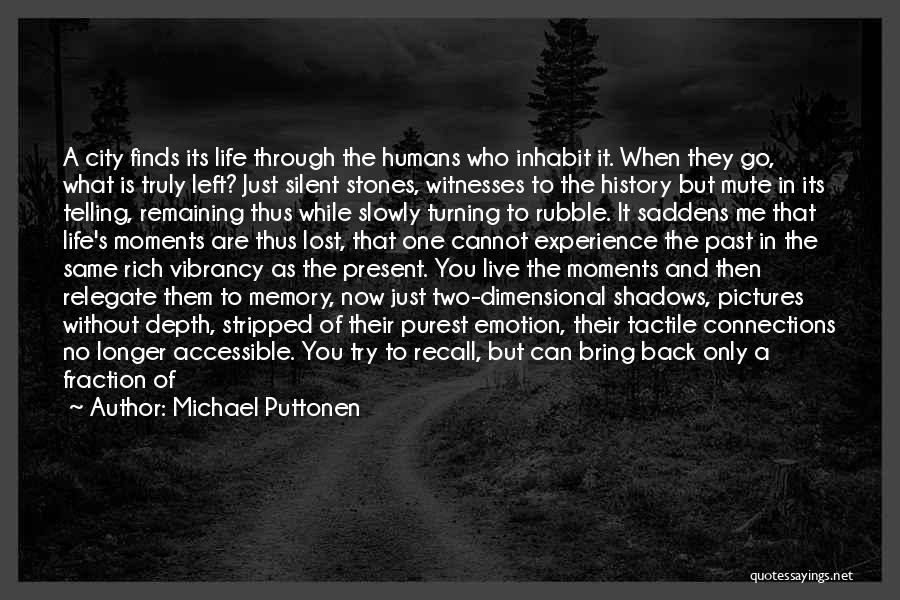 Stones And Life Quotes By Michael Puttonen