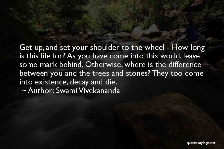 Stones And Life Quotes By Swami Vivekananda