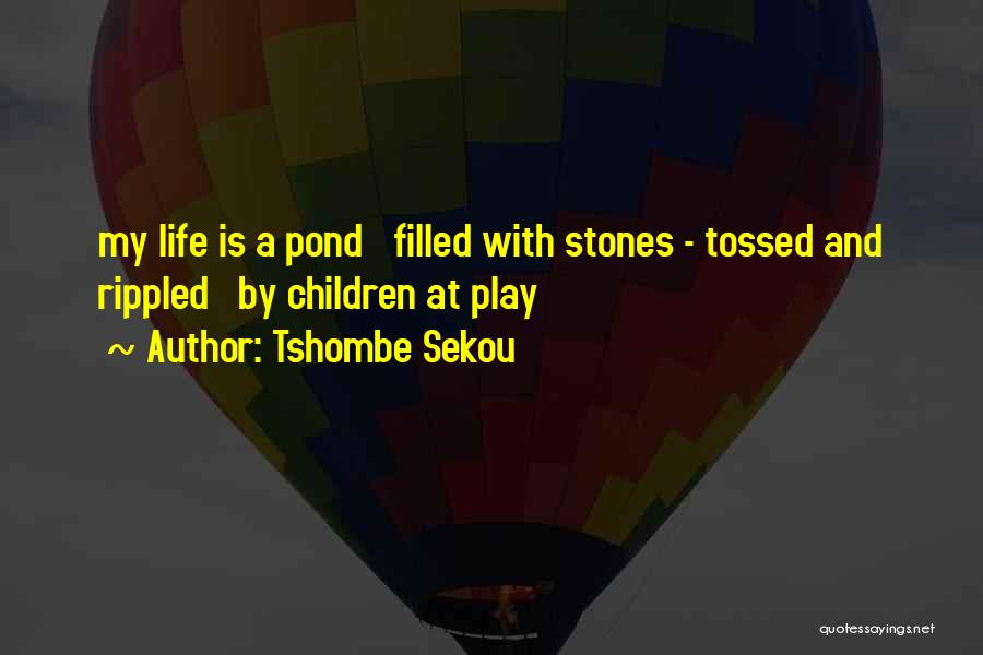 Stones And Life Quotes By Tshombe Sekou