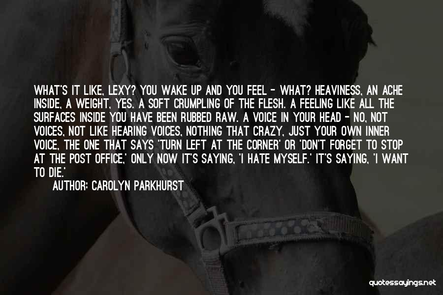 Stop The Voices In My Head Quotes By Carolyn Parkhurst