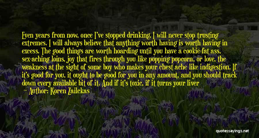 Stopped Drinking Quotes By Koren Zailckas