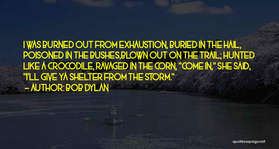 Storm Shelter Quotes By Bob Dylan