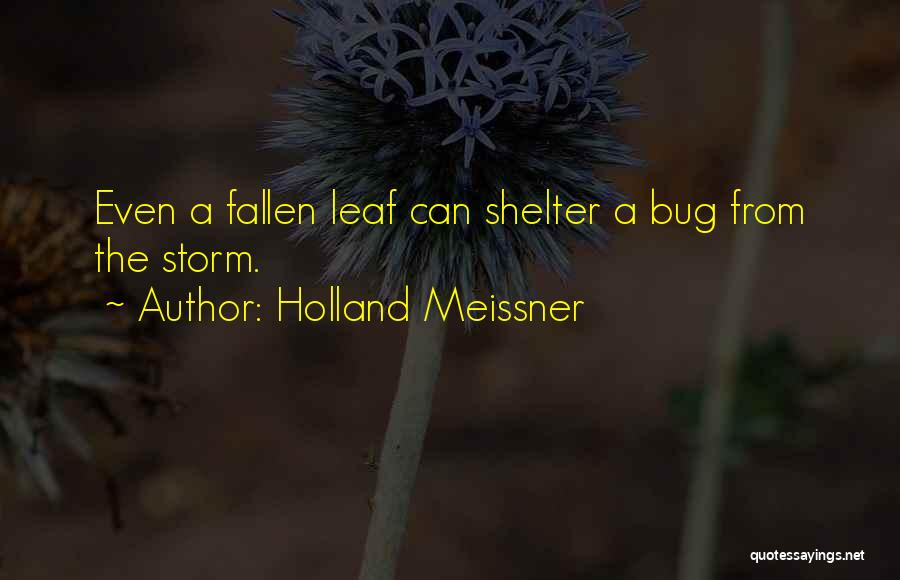 Storm Shelter Quotes By Holland Meissner