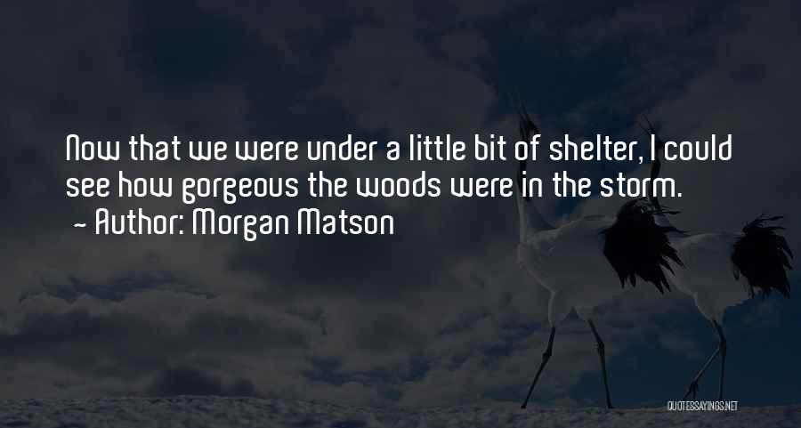 Storm Shelter Quotes By Morgan Matson