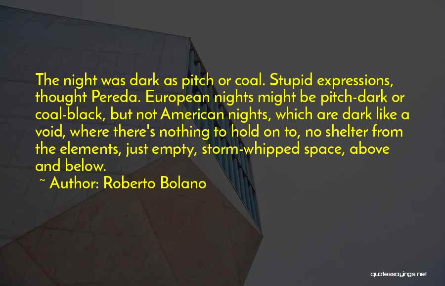 Storm Shelter Quotes By Roberto Bolano