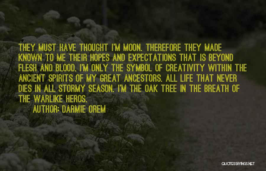 Stormy Life Quotes By Darmie Orem