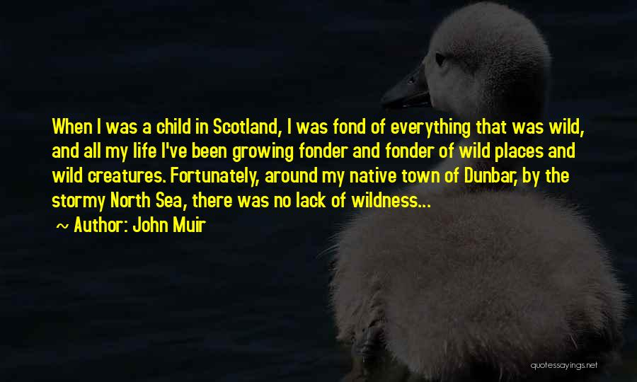 Stormy Life Quotes By John Muir