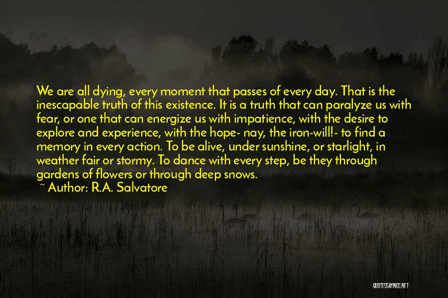 Stormy Life Quotes By R.A. Salvatore