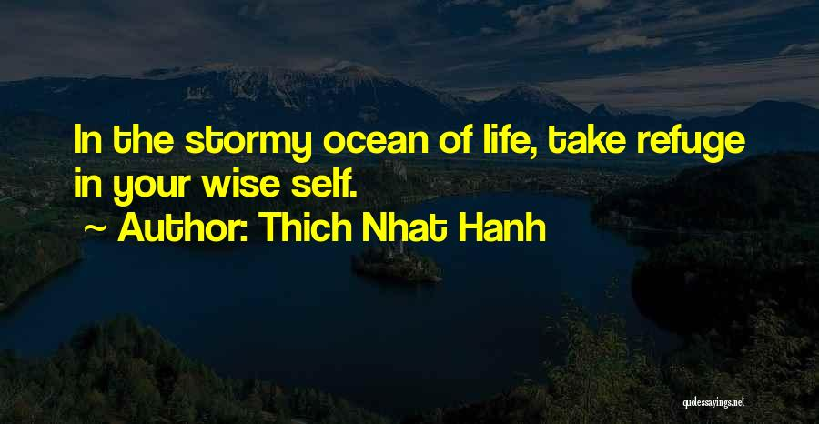 Stormy Life Quotes By Thich Nhat Hanh