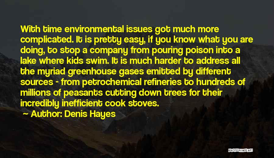 Stoves Quotes By Denis Hayes