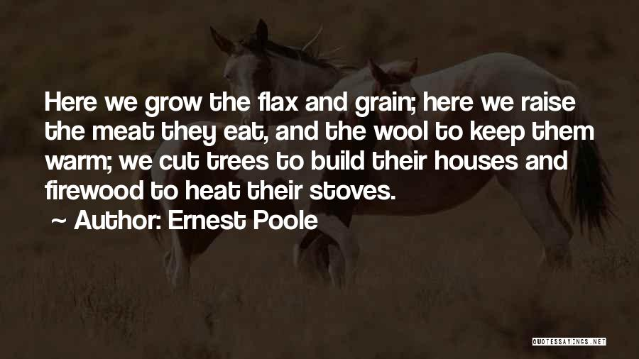 Stoves Quotes By Ernest Poole