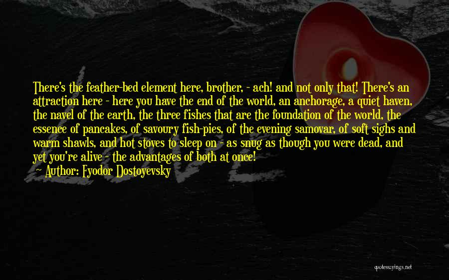 Stoves Quotes By Fyodor Dostoyevsky