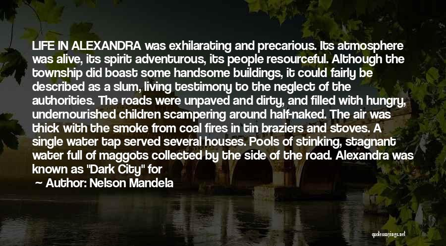 Stoves Quotes By Nelson Mandela