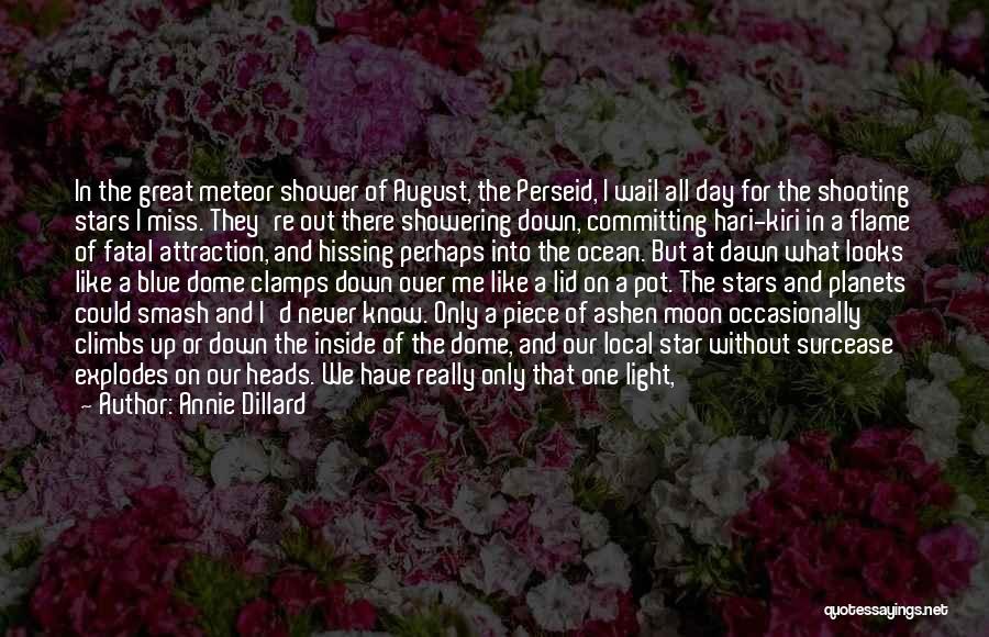 Strange Beauty Quotes By Annie Dillard