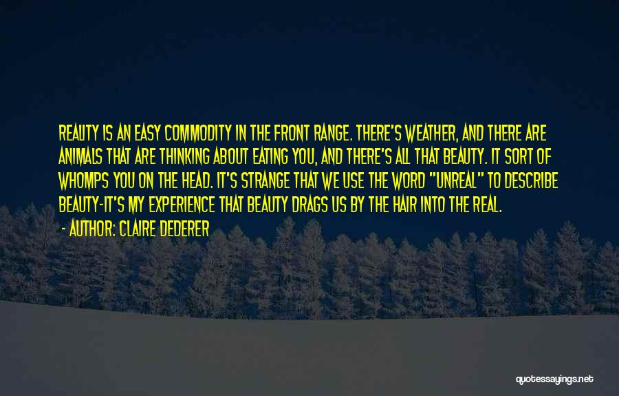 Strange Beauty Quotes By Claire Dederer