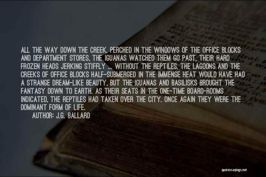 Strange Beauty Quotes By J.G. Ballard