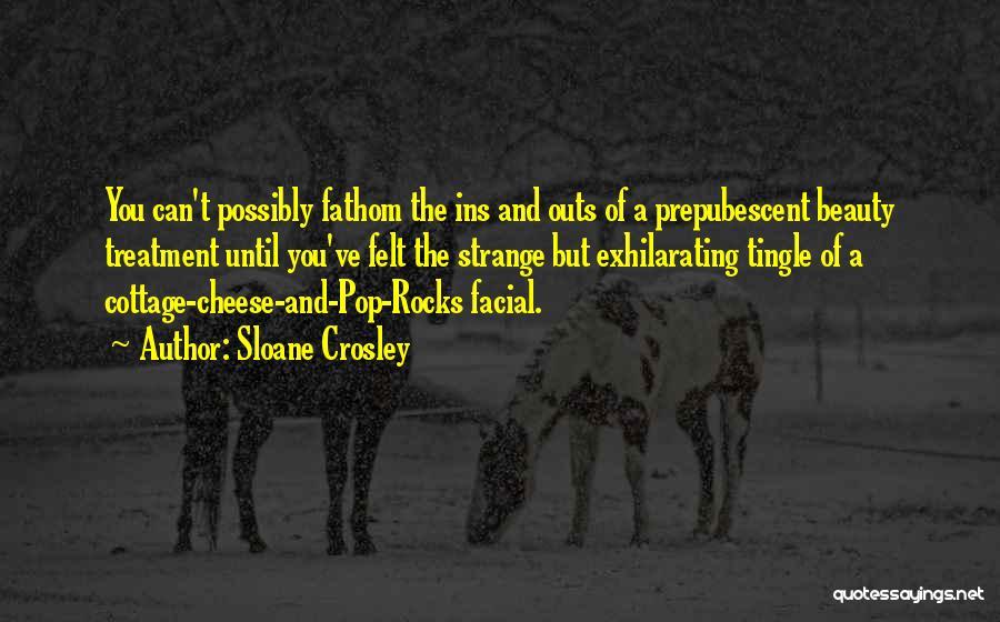 Strange Beauty Quotes By Sloane Crosley