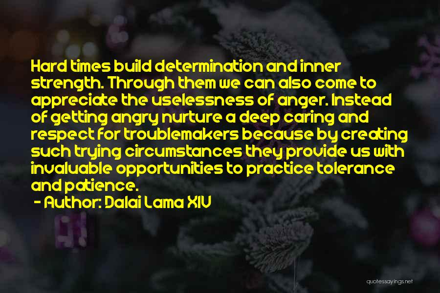 Strength In Trying Times Quotes By Dalai Lama XIV