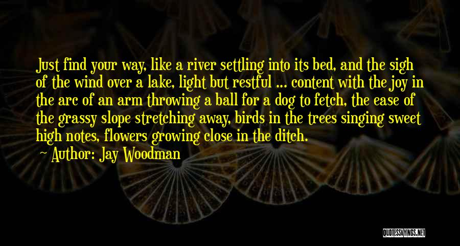 Stretching The Mind Quotes By Jay Woodman