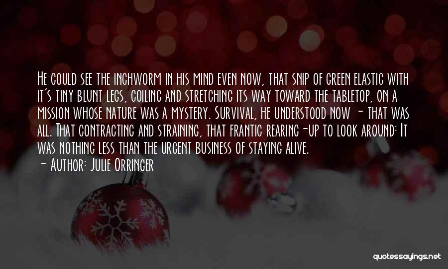 Stretching The Mind Quotes By Julie Orringer
