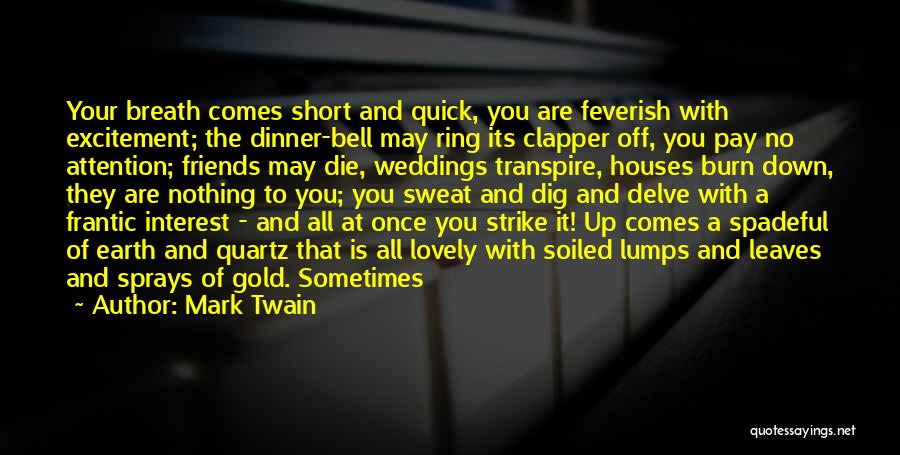 Strike Gold Quotes By Mark Twain