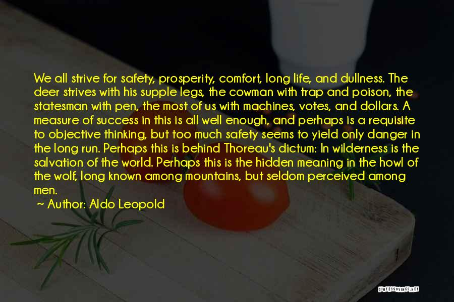 Strive For Success Quotes By Aldo Leopold