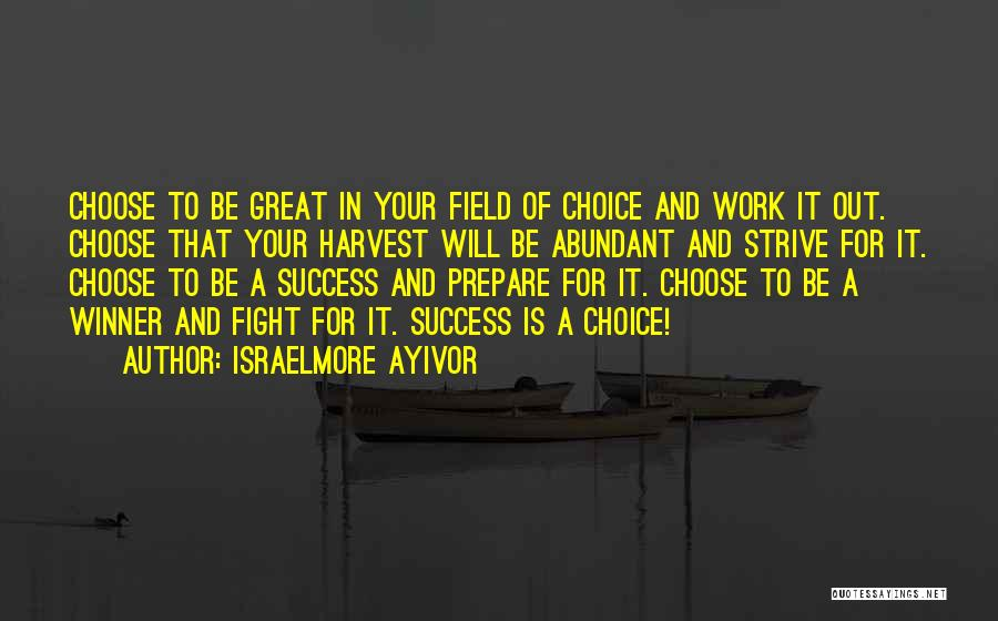 Strive For Success Quotes By Israelmore Ayivor