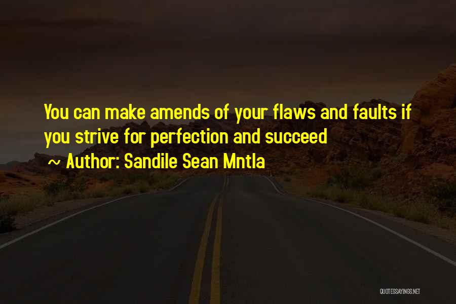 Strive For Success Quotes By Sandile Sean Mntla