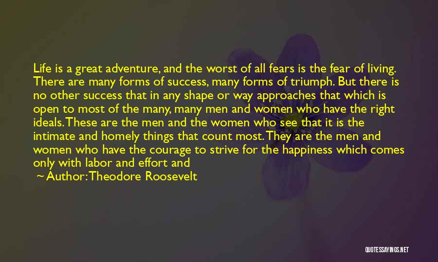 Strive For Success Quotes By Theodore Roosevelt
