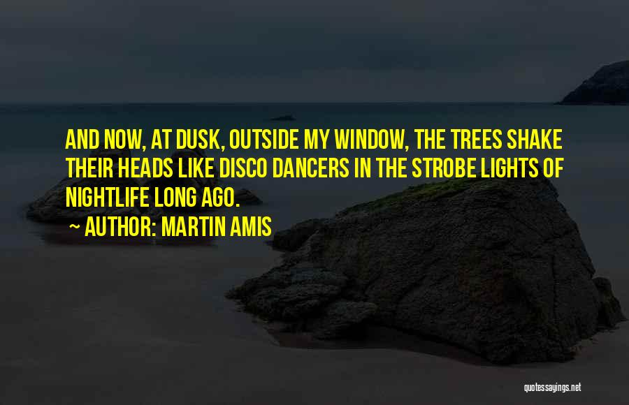 Strobe Quotes By Martin Amis