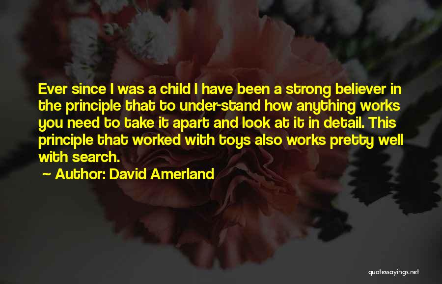 Strong Believer Quotes By David Amerland