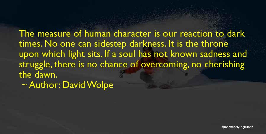 Struggle And Character Quotes By David Wolpe