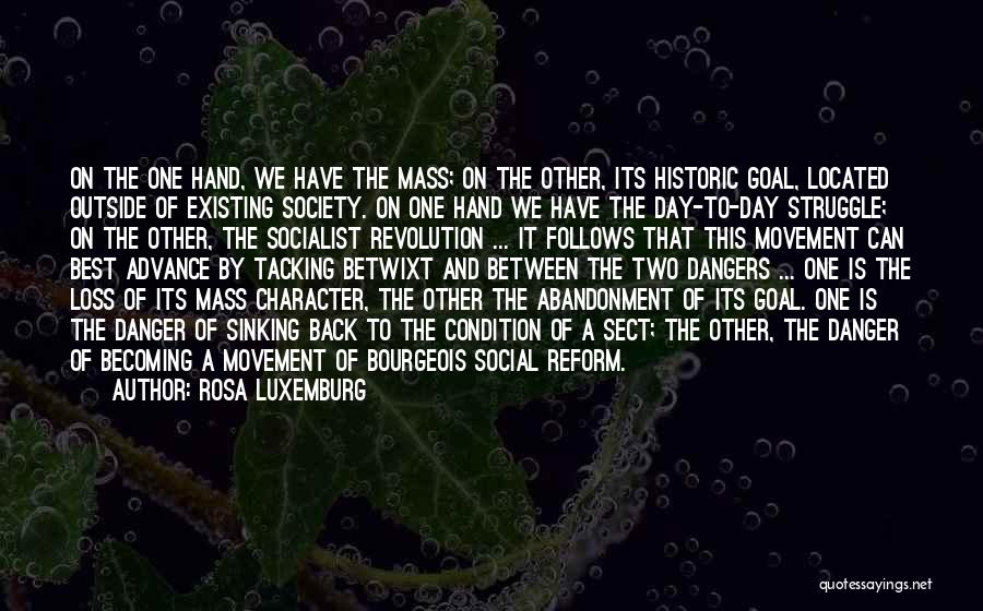 Struggle And Character Quotes By Rosa Luxemburg