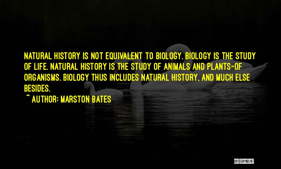 Study Of History Quotes By Marston Bates